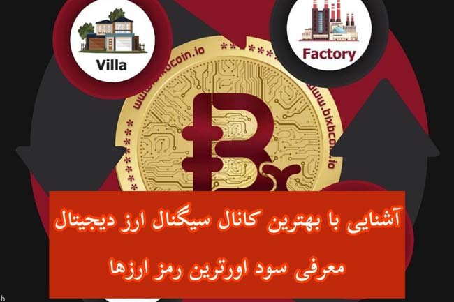 آشنایی با بهترین کانال های سینگال ارز دیجیتال + معرفی سود آورترین رمز ارزها